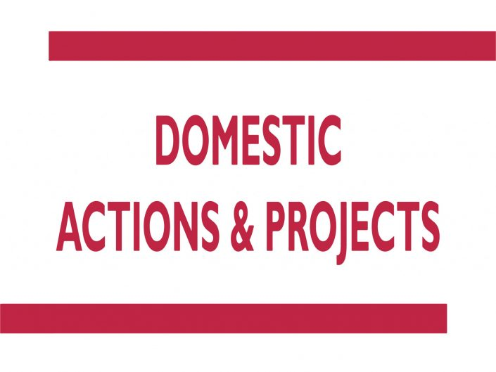 Domestic Actions and Projects Committee (DAP)