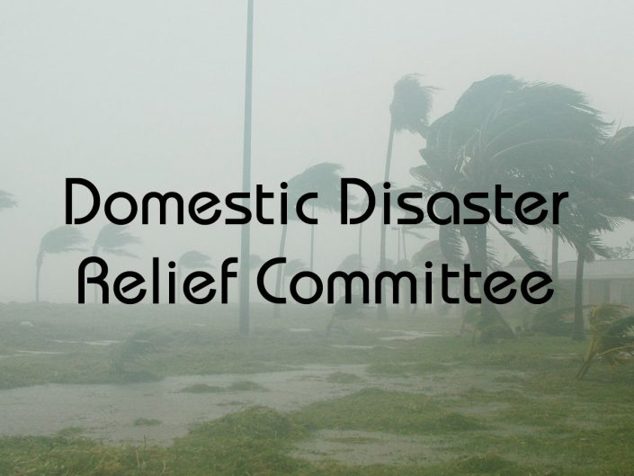 Domestic Disaster Relief Committee
